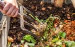 Огородные хитрости: Как быстро сделать компост в домашних условиях без грязи и запаха