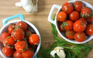 Быстрые малосольные помидоры: 7 оригинальных рецептов любимой закуски