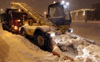 На столичный регион надвигаются морозы и снегопад – как спасти дачу от последствий