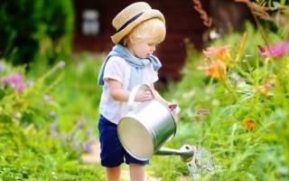 Лето на даче – помните про безопасность детей