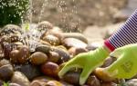 Виды декоративных фонтанов для дачи – учим азы