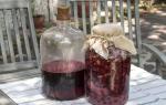 Как сделать вино из забродивших продуктов: 3 отличные идеи