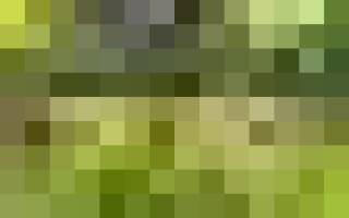 Искусство тамбо, или Рисовое поле как холст