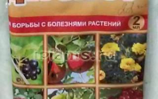 Дискор, КЭ