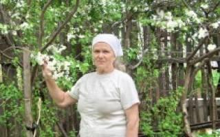 Первая помощь плодовому саду