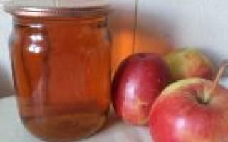 5 оригинальных рецептов домашнего яблочного сока