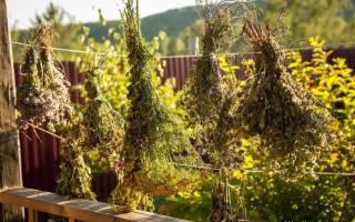 Как сделать мочалку с травами своими руками – мастер-класс с фото
