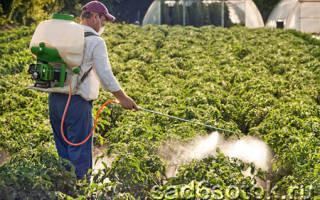Защитить растения от болезней и вредителей без «химии» – реально!