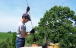 Как прочистить дымоход самостоятельно: 3 работающих метода