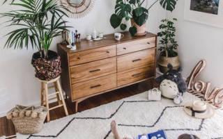Фитодизайн интерьера – как разместить комнатные растения в квартире и правильно за ними ухаживать