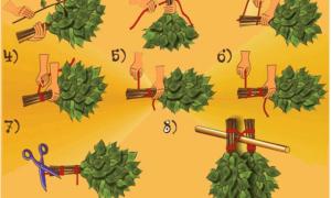 Правильный веник для бани – какой выбрать, как вязать и запаривать