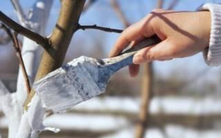 Арбо-Флекс – надежная защита молодых деревьев от морозобоин и солнечных ожогов