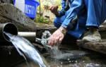 Не пей – козленочком станешь: определяем и улучшаем качество воды на даче