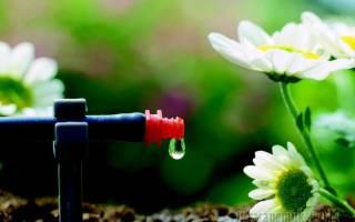 Несколько идей, как сделать капельный полив на даче своими руками