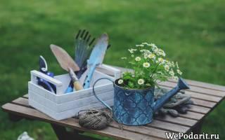 12 отличных идей, что подарить садоводам к весенним праздникам