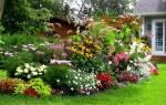 Заселяем цветник