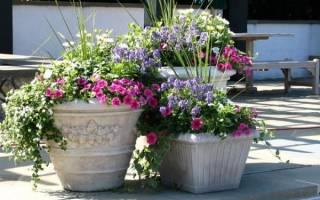 5 простых способов сэкономить время и деньги в саду