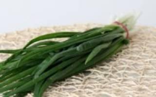 5 популярных сортов белого лука