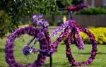 Цветы возле подъезда: какие, сколько и в каком месте посадить