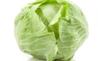 Как спасти урожай капусты без «химии»?