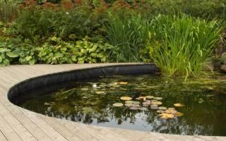 10 самых важных вопросов про водоем на участке