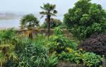 Маленький сад в Шотландии, скрытый от посторонних глаз