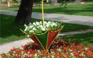 Оформление дачного газона декоративными растениями – 5 основных правил