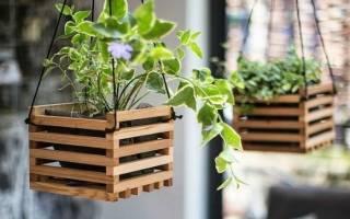 Горшки с подсветкой – стильное садовое украшение
