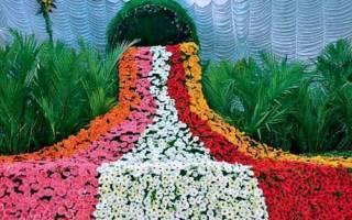 Цветочный ручей – отличная идея для нескучного сада