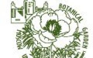 Обзор питомников Подмосковья: лучшие акции на осенние саженцы