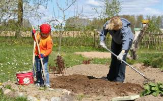 Лайфхаки для дачников, или Как облегчить себе жизнь во время посевной