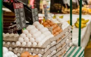 10 неизвестных фактов о яйцах – ко Всемирному дню яйца