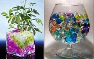 Есть вопрос: как правильно использовать гидрогель для выращивания растений