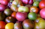 Что говорит цвет томатов об их вкусе?