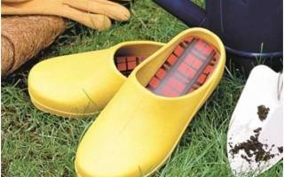 Обувь для дачи: выбираем и примеряем
