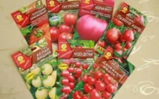 Как выбрать самые лучшие семена для посева на рассаду