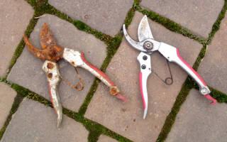 Почему портятся садовые инструменты – 5 главных причин