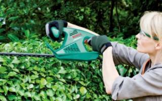 Кусторез для живой изгороди – ручной или автоматический?