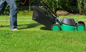 Куда девать траву после покоса газона