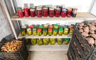 Как подготовить погреб к хранению урожая