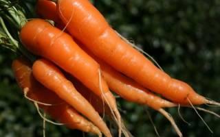 Помним об овощах
