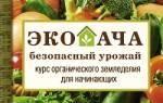 Навоз: как применять натуральное удобрение для подкормки растений