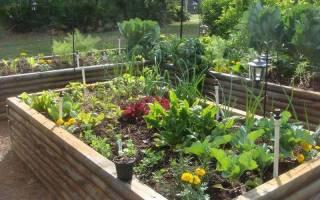 Огородные хитрости: как отказаться от «химии» на даче и при этом не потерять урожай