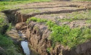 Уровень грунтовых вод на участке – как определить самостоятельно