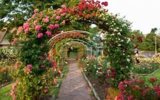 Арка в саду как способ преобразить пространство