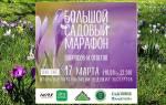Большой садовый марафон по вопросам ландшафтного дизайна: ответы экспертов!