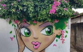 Клумба на даче: цветочные фантазии собственными руками