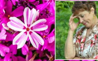 Подскажите, что делать, если соседка ворует цветы?